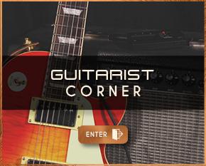 Visuel guitariste